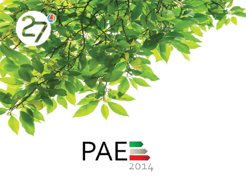 Pae2014-Efficienza-Energetica